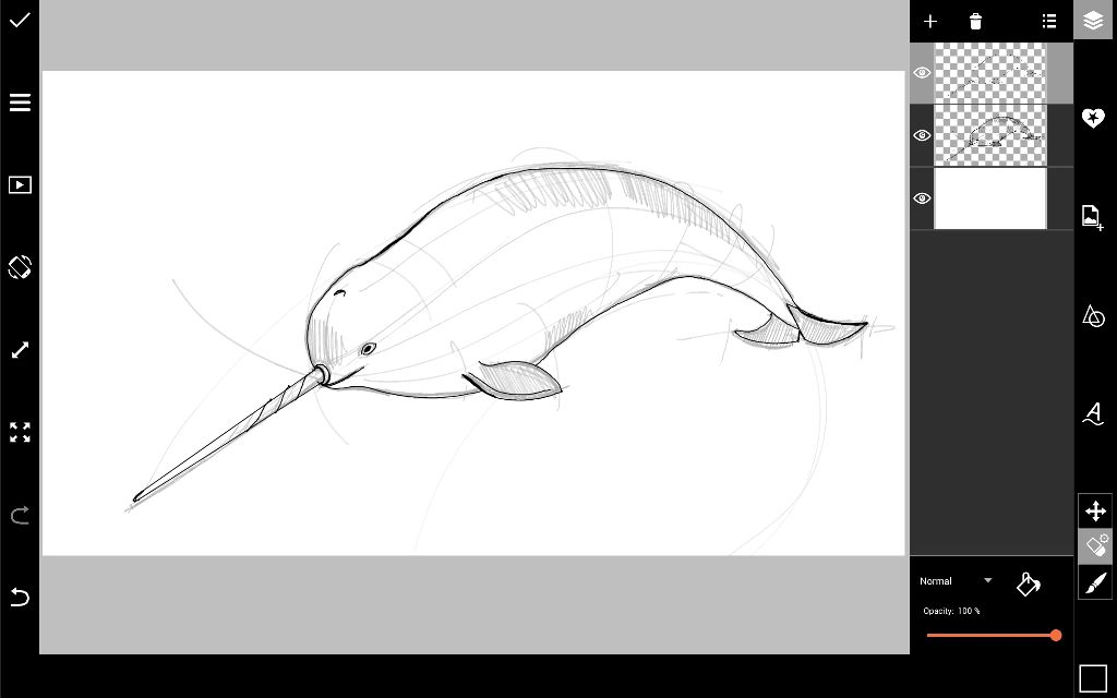 how to draw a narwal narwhal drawing google search narwhal drawing narwhal to how a draw narwal
