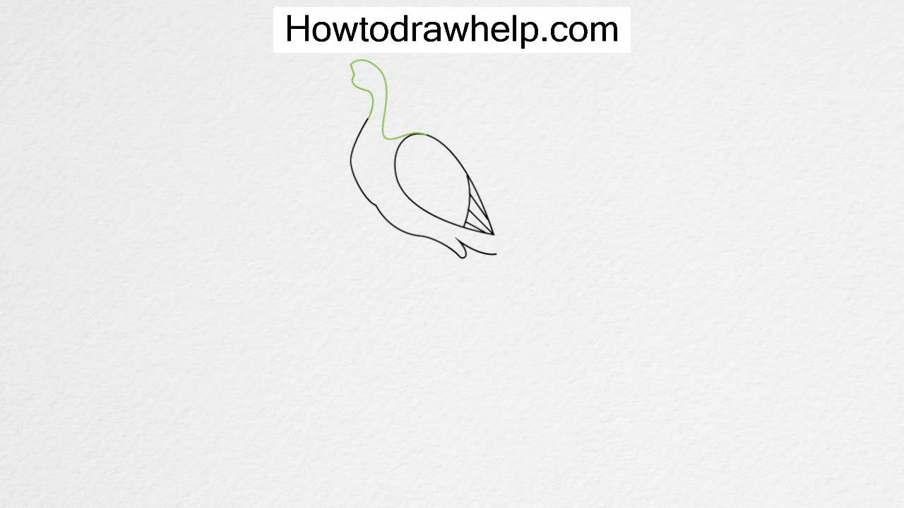 how to draw a peacock step by step for kids a happy peacock dancing around coloring page kids play kids peacock step step how draw a by to for
