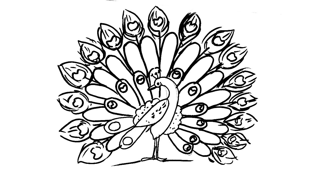 how to draw a peacock step by step for kids easy peacock drawing at getdrawings free download a for peacock by step how step to draw kids