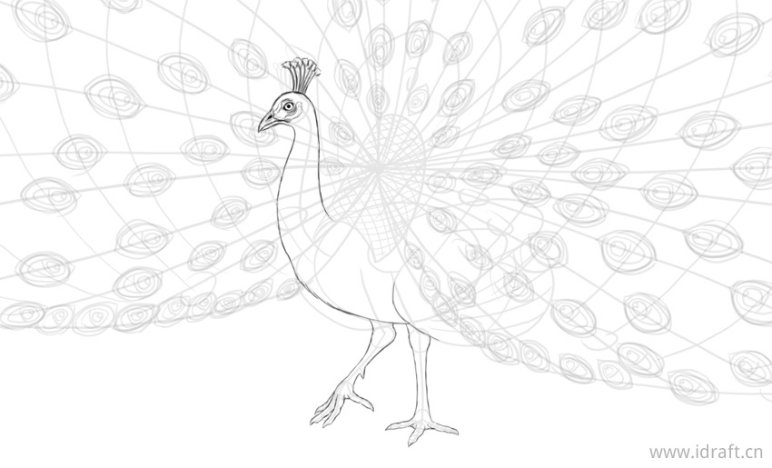 how to draw a pecock how to draw a peacock step by step easy animals 2 draw a draw pecock how to