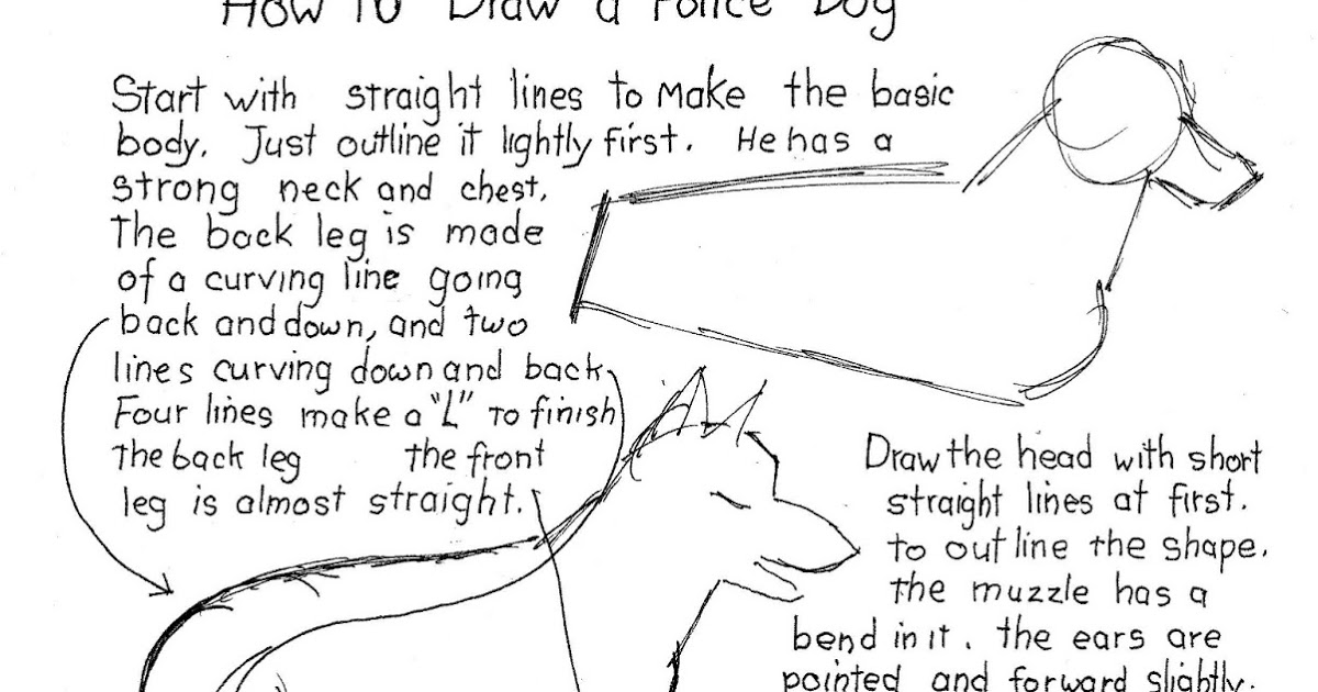 how to draw a police dog how to draw worksheets for the young artist how to draw a dog how police to draw a