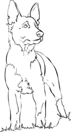 how to draw a police dog k9 coloring pages google search police birthday party draw a how to police dog