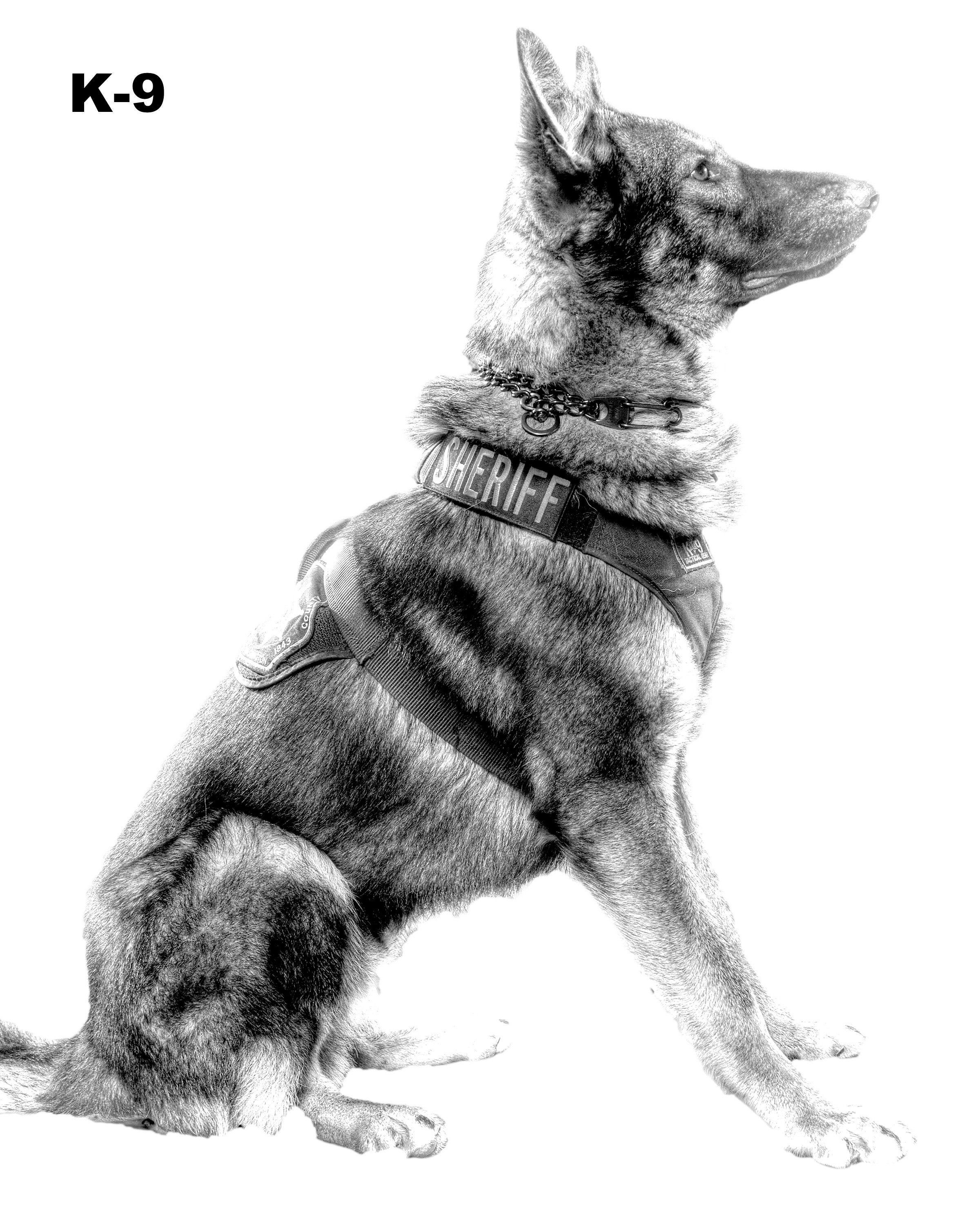 how to draw a police dog k9 officer k9 handler gift police dog man cave art etsy a draw to police dog how