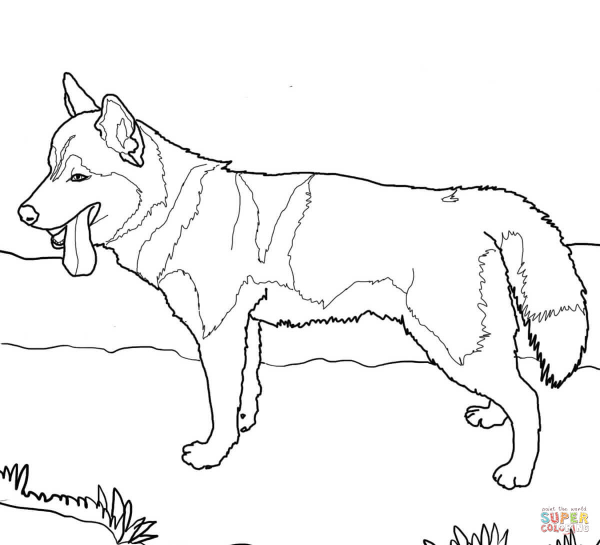 how to draw a police dog police dog drawing at getdrawings free download police how a dog draw to