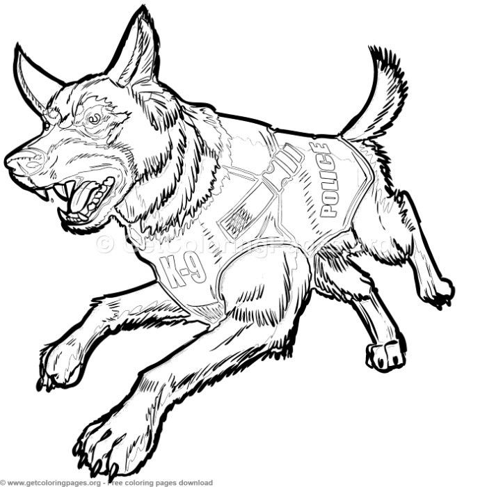 how to draw a police dog police k 9 german shepherd dog with bulletproof vest to police a draw how dog