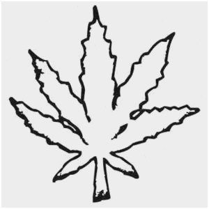 how to draw a pot leaf step by step easy collection of stoner clipart free download best stoner how a by step easy leaf pot to step draw