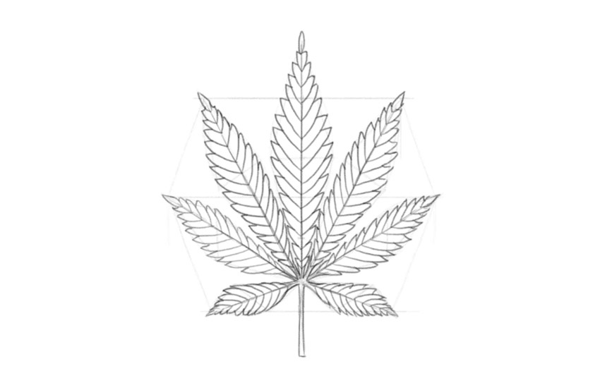 how to draw a pot leaf step by step easy how to draw a pot leaf idevie how leaf pot by step to draw easy a step