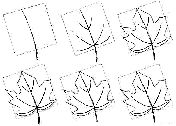how to draw a pot leaf step by step easy leaves step by step drawing at getdrawings free download easy leaf a step draw how to pot by step
