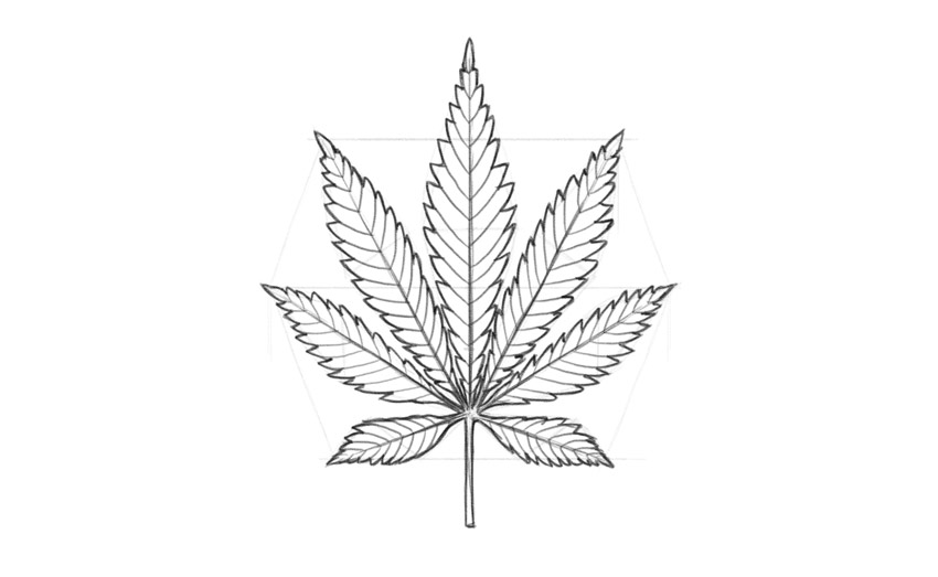 how to draw a pot leaf step by step easy pot leaf drawing step by step at getdrawings free download to draw by how a step step leaf easy pot
