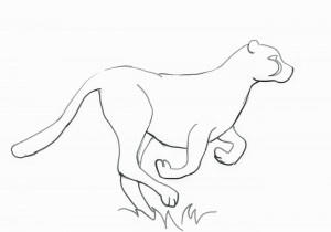 how to draw a realistic cheetah step by step how to draw realistic cheetah tiger step by step easy for by cheetah to step a draw step how realistic
