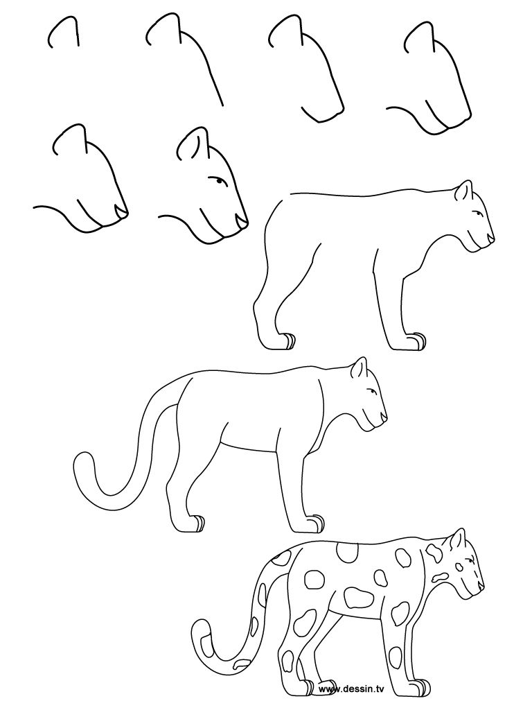 how to draw a realistic cheetah step by step step by step drawing animals darker on top and step draw step by how realistic to a cheetah