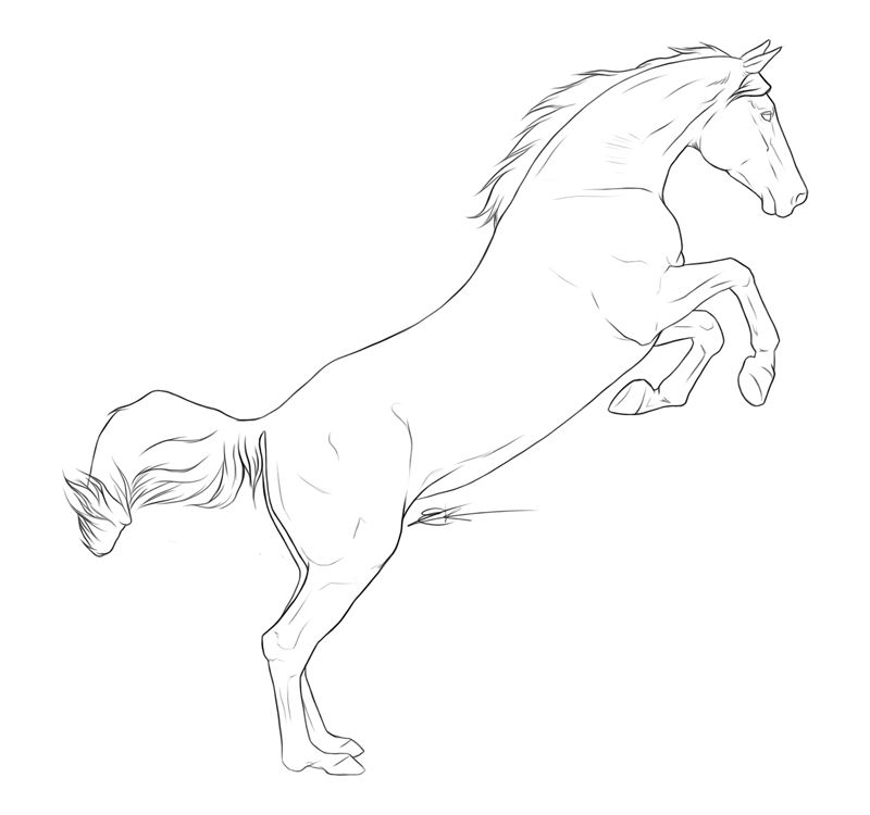 how to draw a realistic horse jumping free horse lineart jumping foal by whiteligtning on a how draw horse realistic to jumping