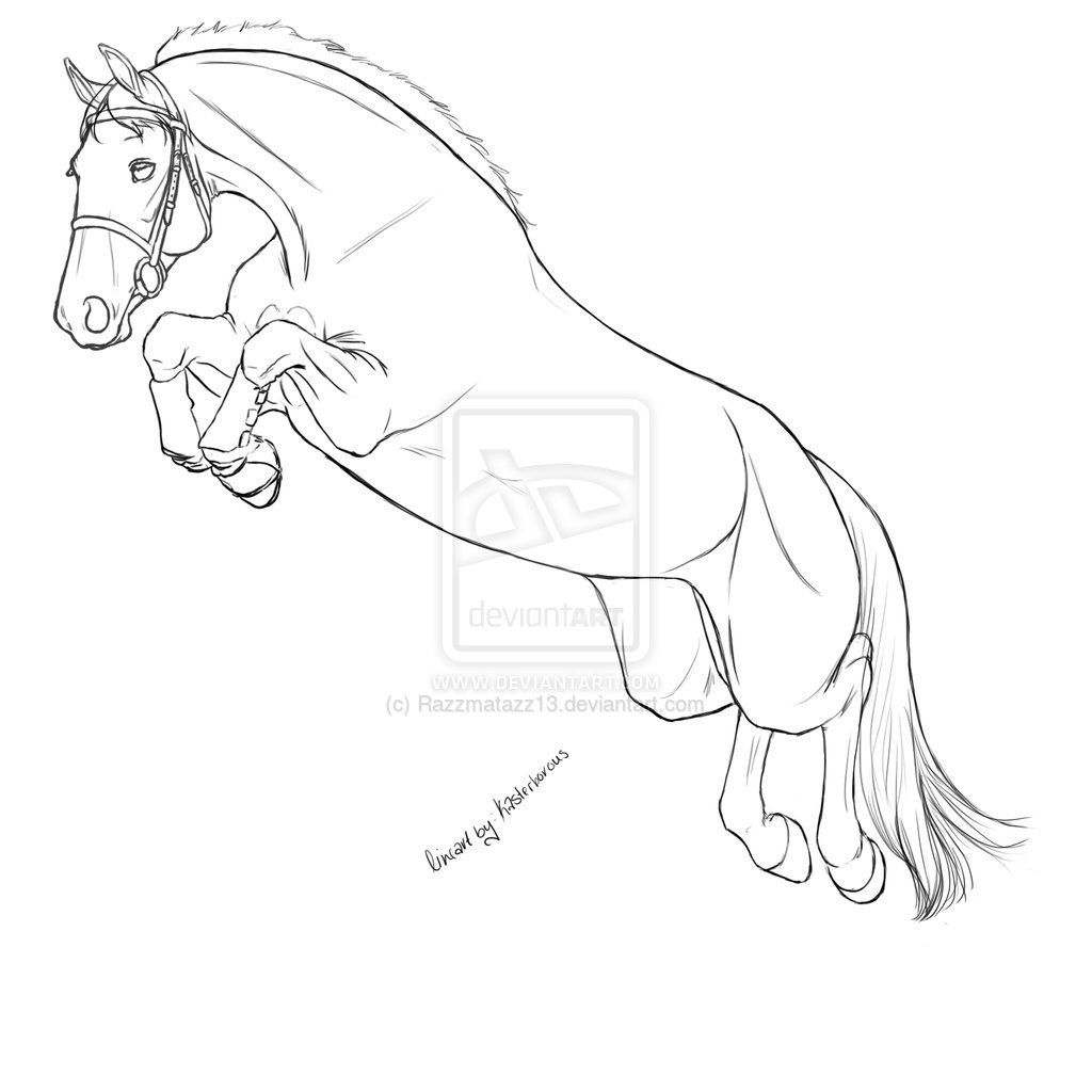 how to draw a realistic horse jumping horse jumping coloring pages at getcoloringscom free realistic horse jumping draw how a to