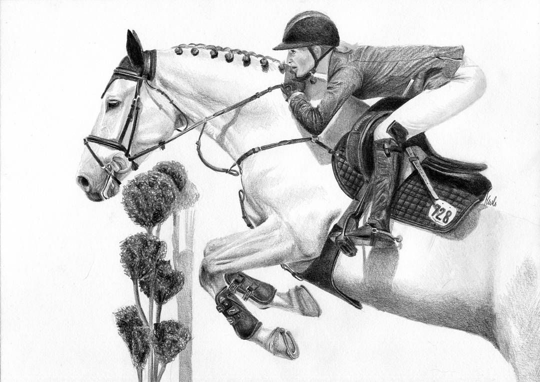 how to draw a realistic horse jumping horse jumping coloring pages print coloring horse to a how realistic jumping draw