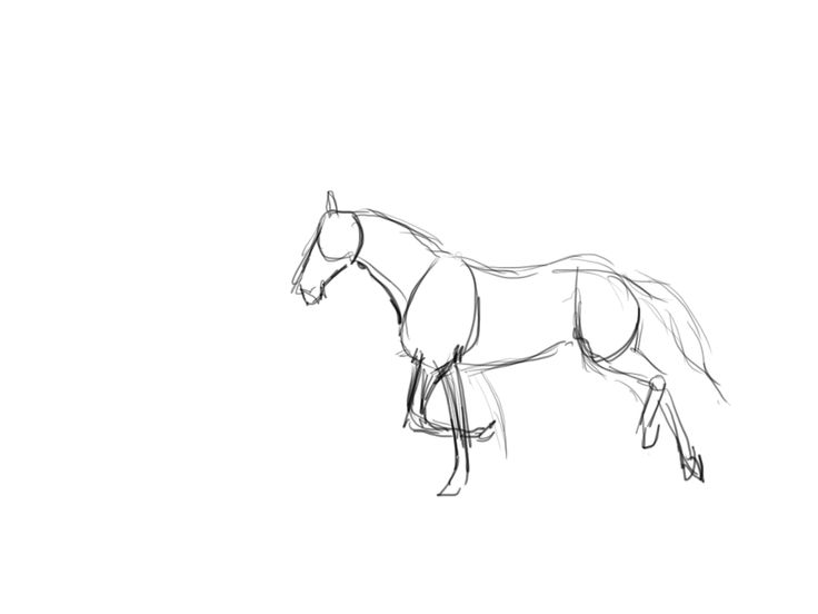how to draw a realistic horse jumping horse jumping lineart by wildpathz on deviantart how realistic to jumping draw a horse