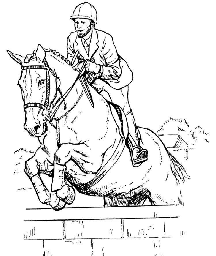 how to draw a realistic horse jumping konie horse pferd horsesofinstagram equine draw a horse how jumping to realistic