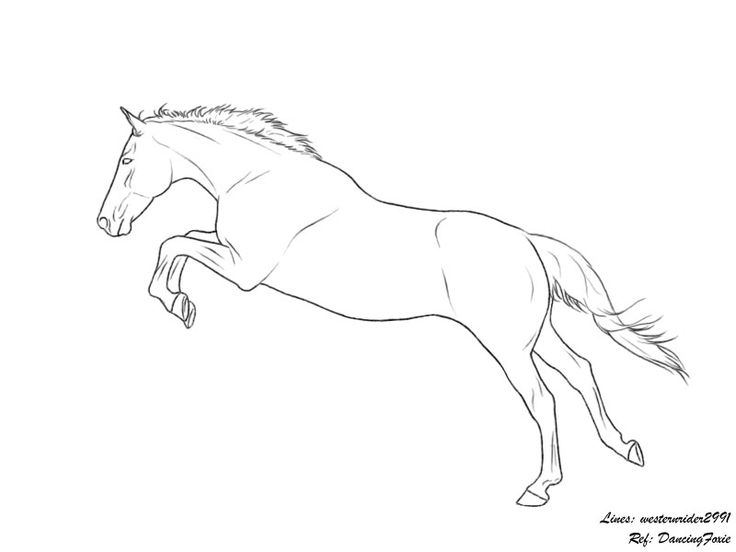 how to draw a realistic horse jumping show jumping horse coloring pages at getdrawingscom draw to a how jumping horse realistic
