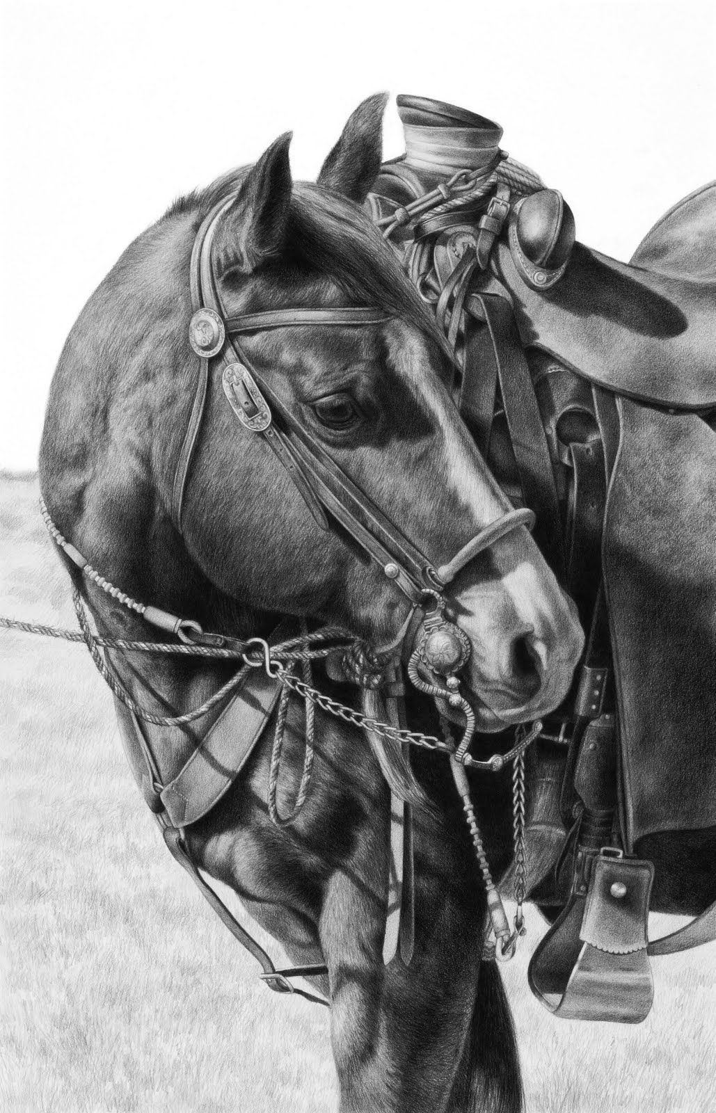 how to draw a realistic horse jumping step howtodraw horses tutorials how to draw horses with a how to horse draw realistic jumping