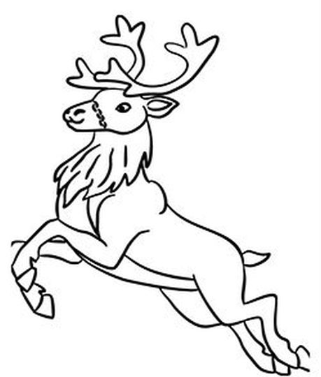 how to draw a reindeer face how to draw rudolph the red nosed reindeer step by step how reindeer a face draw to