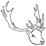 how to draw a reindeer face reindeer face drawing at getdrawings free download face how a reindeer to draw