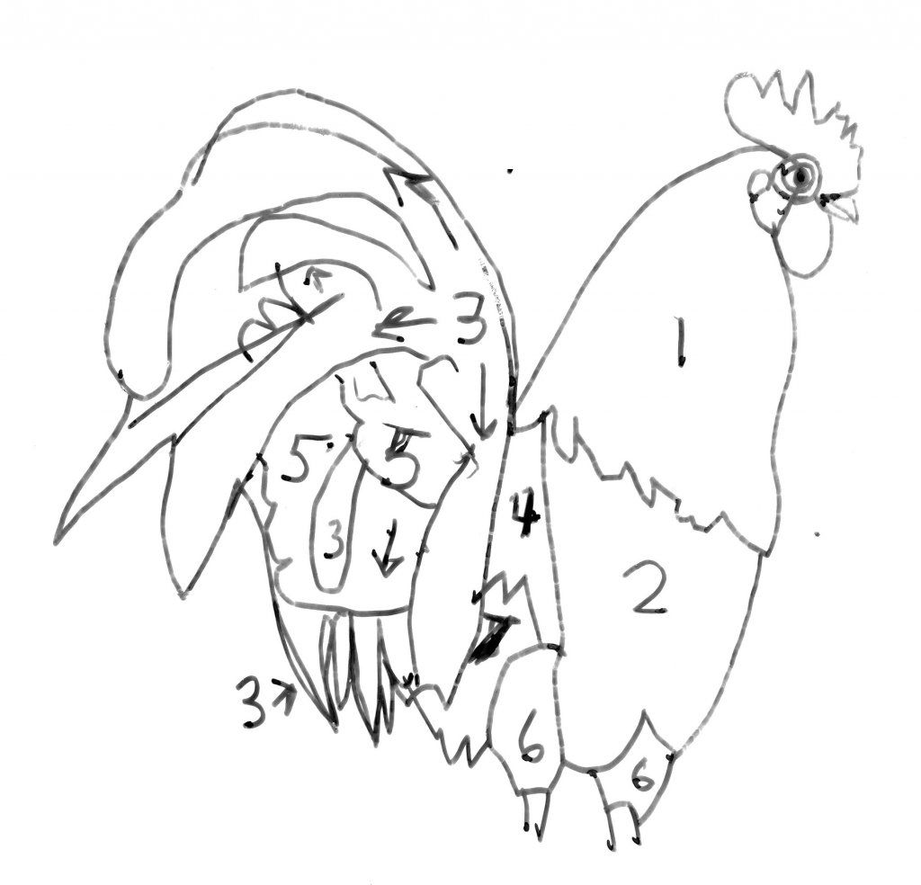 how to draw a rooster drawn rooster line drawing pencil and in color drawn to how a draw rooster