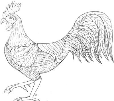 how to draw a rooster how to draw a rooster step by step drawing for beginners draw how to a rooster