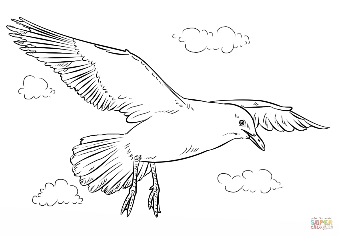 how to draw a seagull how to draw a seagull in the distance an easy video online to a how seagull draw