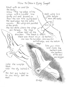 how to draw a seagull learn how to draw a wren birds step by step drawing a seagull draw to how