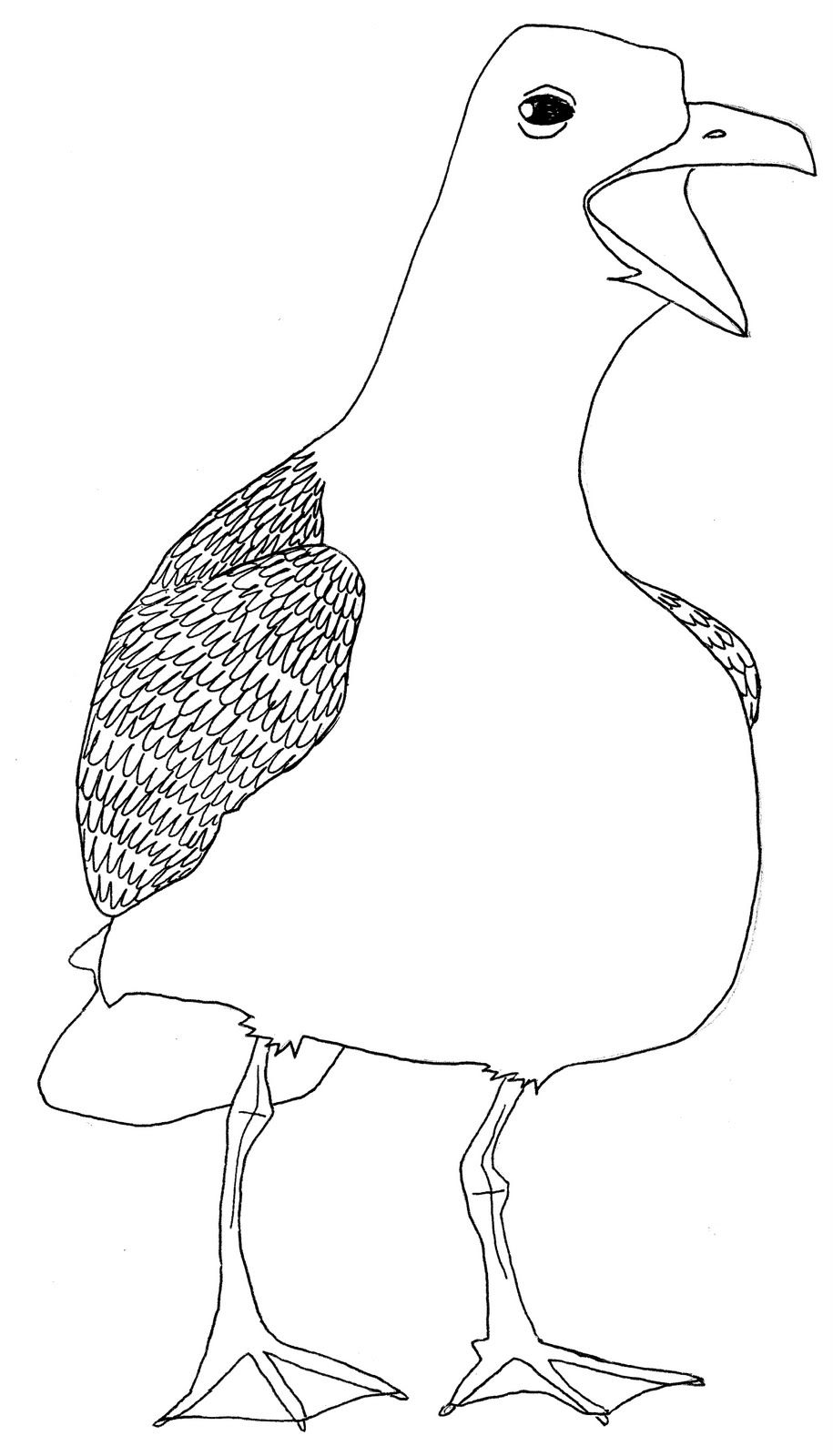 how to draw a seagull seagulls drawing at getdrawings free download seagull to a draw how
