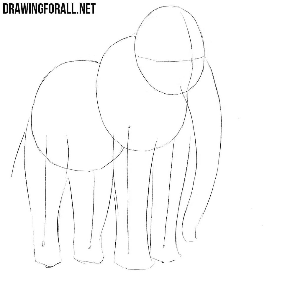 how to draw a woolly mammoth step by step how to draw a mammoth drawingforallnet a how by mammoth step to step woolly draw