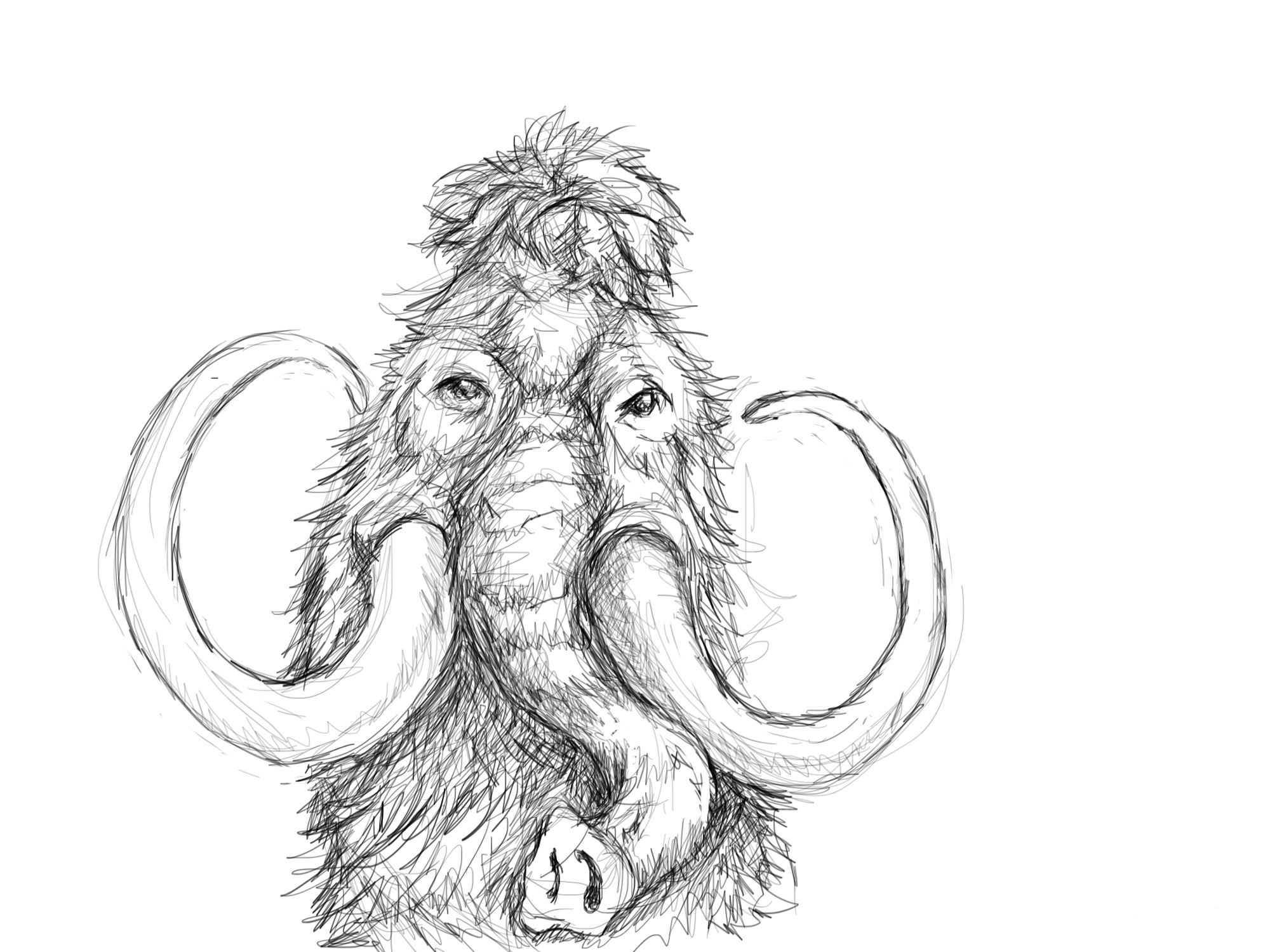 how to draw a woolly mammoth step by step how to draw a mammoth youtube woolly step draw how mammoth a by to step