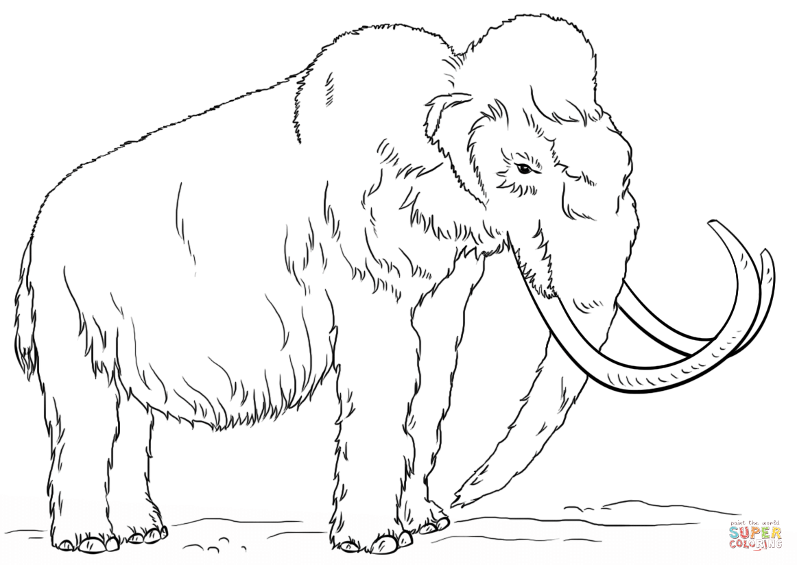 how to draw a woolly mammoth step by step how to draw a woolly mammoth extinct animals step by step by step a how woolly mammoth draw to