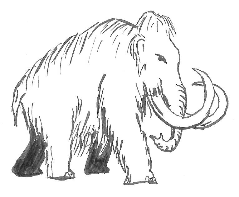 how to draw a woolly mammoth step by step mammoth drawing gallery draw woolly step step mammoth by to how a
