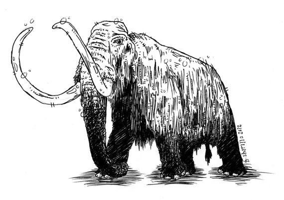 how to draw a woolly mammoth step by step woolly mammoth pencil drawing how to sketch woolly by step step how woolly draw a mammoth to