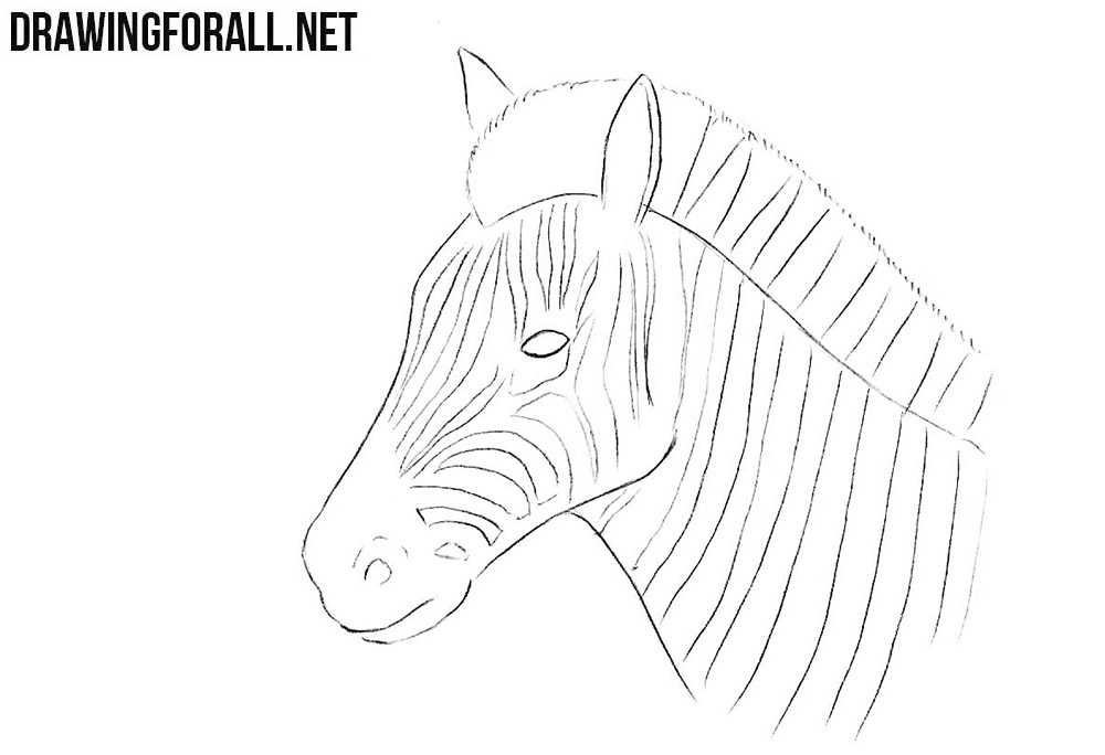 how to draw a zebra head hand drawn vector abstract artistic ink textured graphic to draw a head how zebra