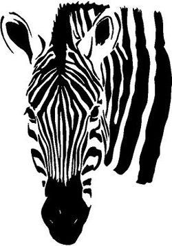 how to draw a zebra head zebra drawing for kid free download on clipartmag zebra a head to draw how