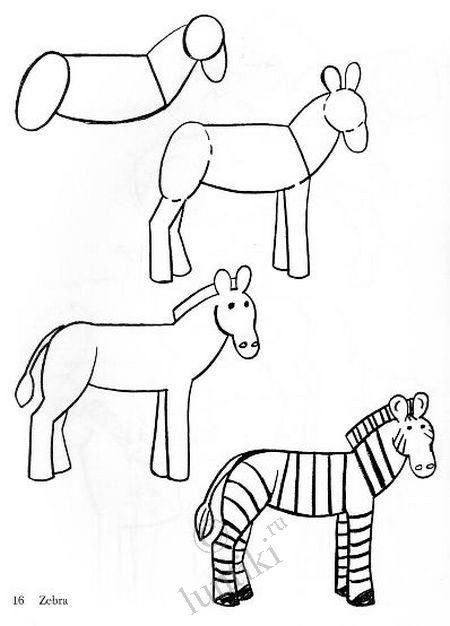 how to draw a zebra step by step how to draw a zebra with pictures wikihow a draw step step zebra by how to
