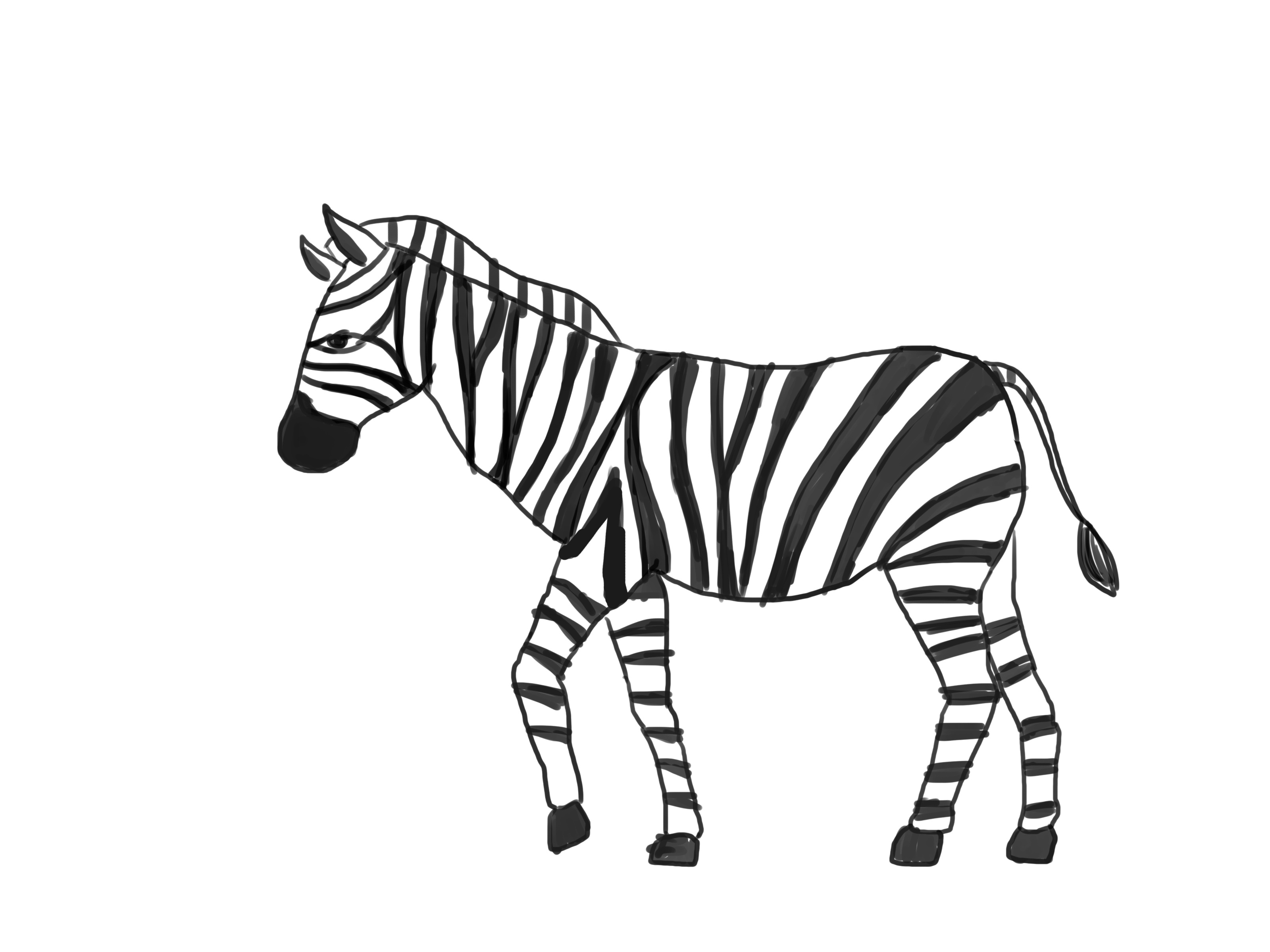 how to draw a zebra step by step learn how to draw a zebra zoo animals step by step step zebra to a draw how step by