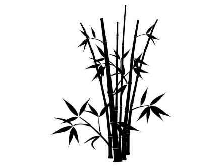 how to draw bamboo 436 best images about zentangle stencils on pinterest draw bamboo to how