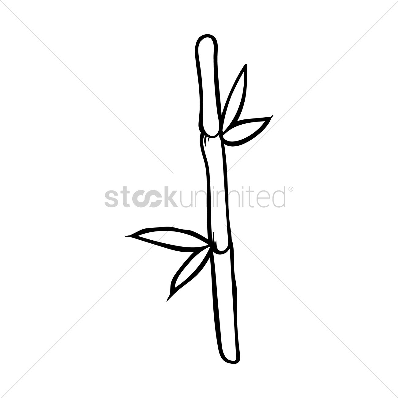 how to draw bamboo bamboo drawing free download on clipartmag bamboo to how draw
