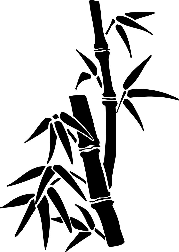 how to draw bamboo bamboo grove photo bamboo drawing how draw bamboo to