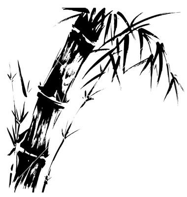 how to draw bamboo bamboo grove photo bamboo drawings how to draw bamboo