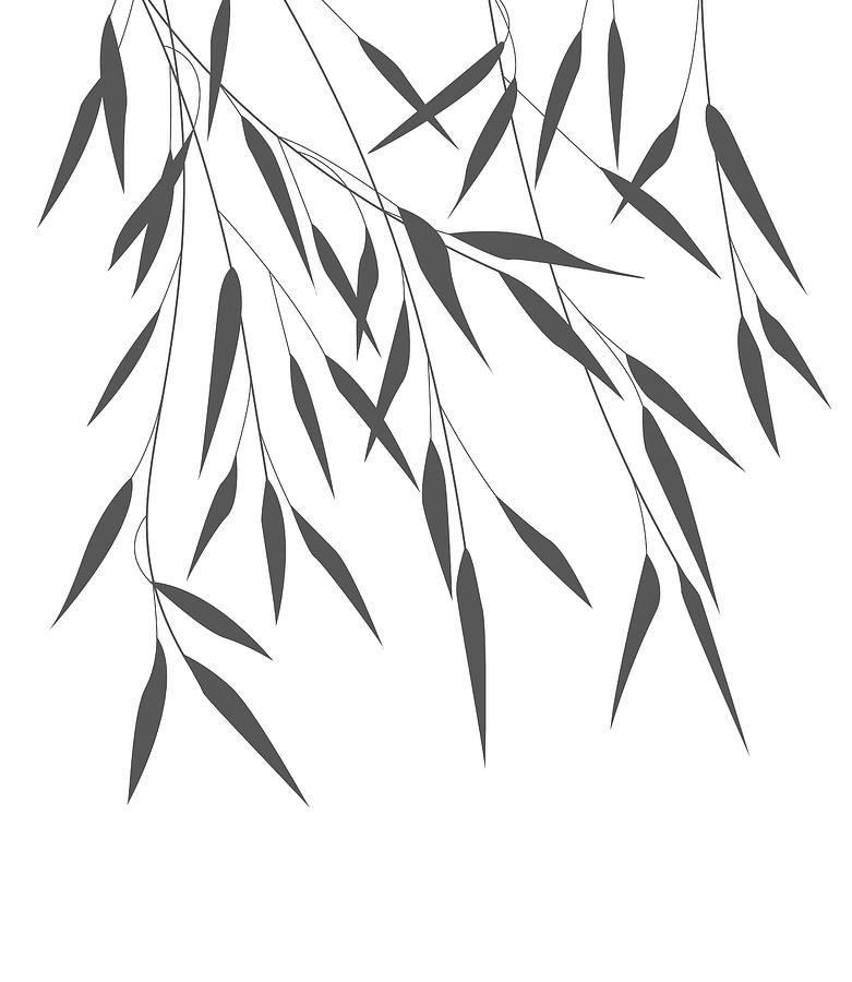 how to draw bamboo drawing bamboo leaves how to draw bamboo