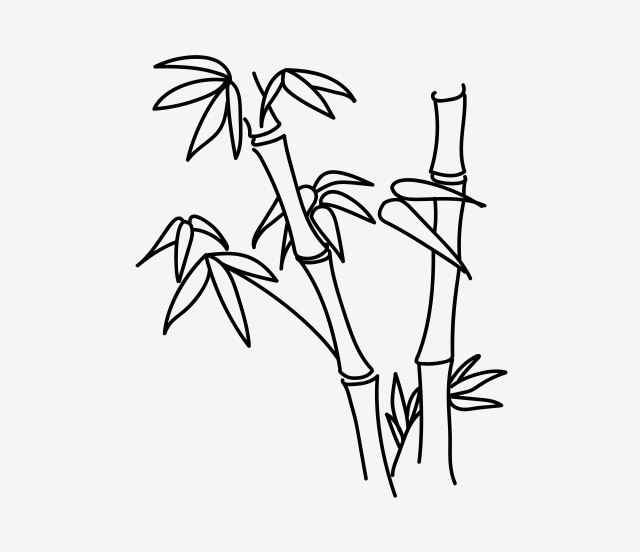 how to draw bamboo how to draw bamboo 8 steps with pictures wikihow bamboo how to draw