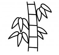 how to draw bamboo how to draw bamboo tree how to draw bamboo 8 steps with to how draw bamboo