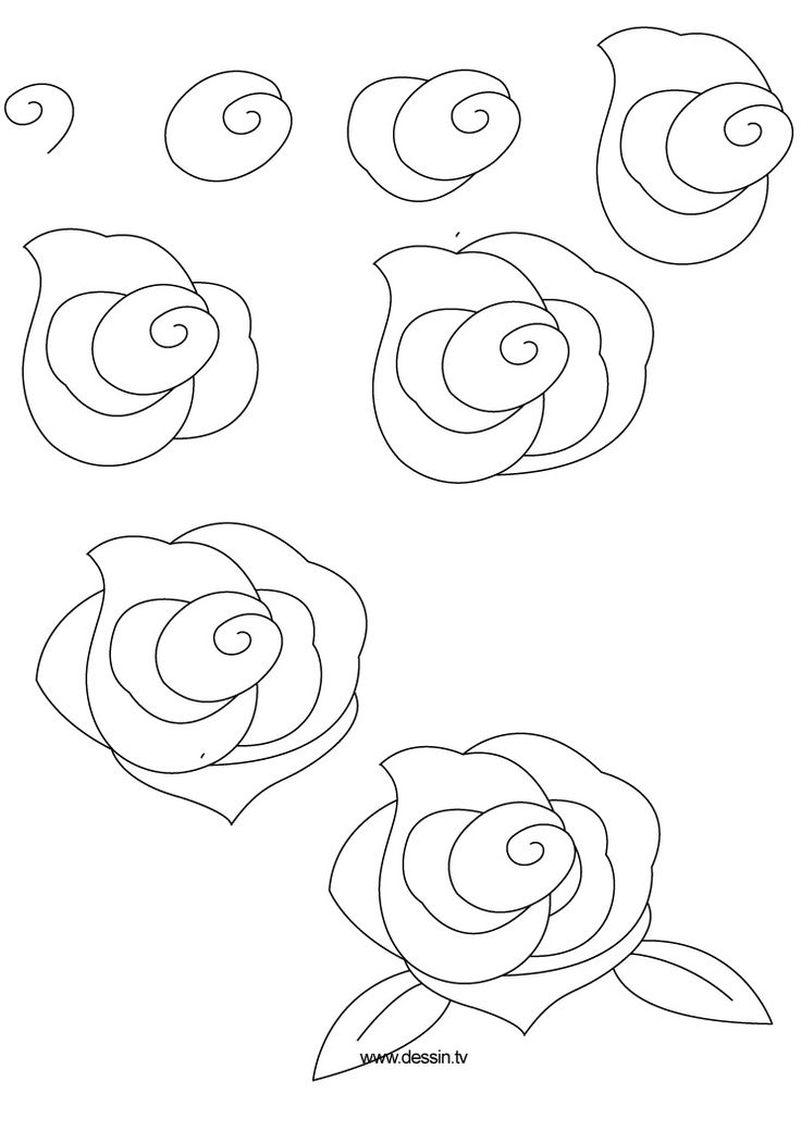 how to draw flowers 1001 ideas and tutorials for easy flowers to draw flowers draw how to