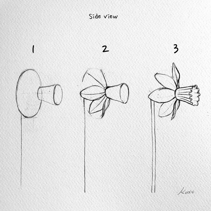 how to draw flowers 1001 ideas and tutorials for easy flowers to draw pictures to draw flowers how