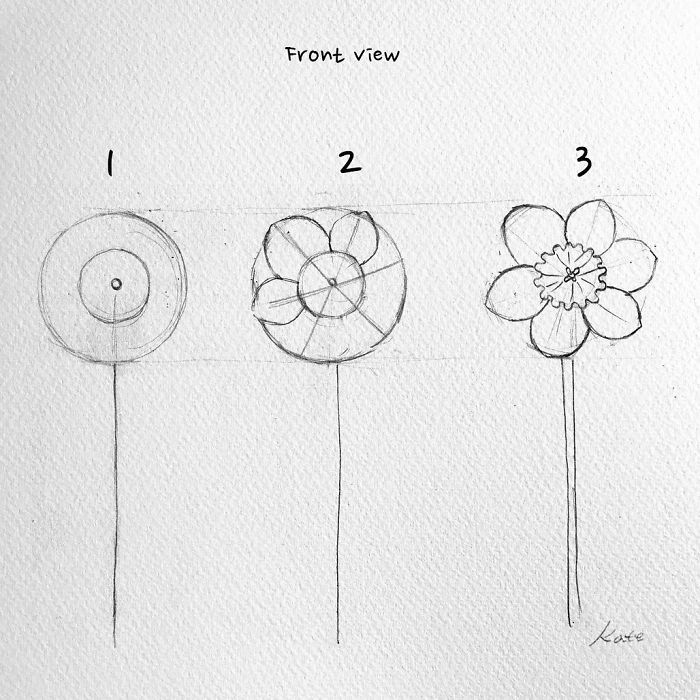 how to draw flowers 1001 ideas and tutorials for easy flowers to draw pictures to draw how flowers
