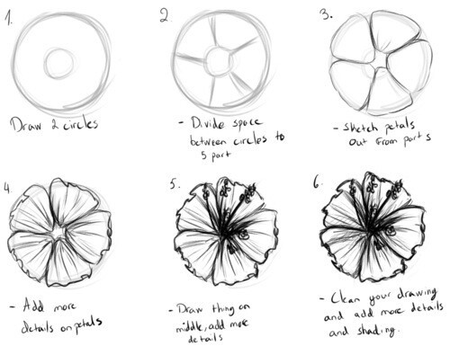 how to draw flowers how to draw a flower drawing flower drawing tutorials draw to flowers how