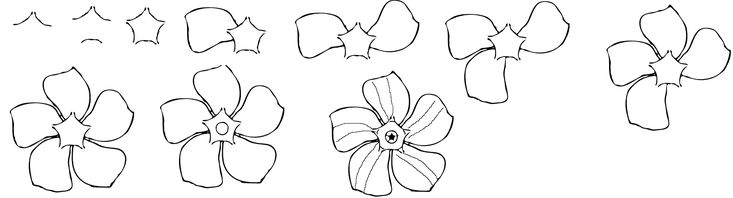 how to draw flowers how to draw a periwinkle flower easy free step by step to draw how flowers